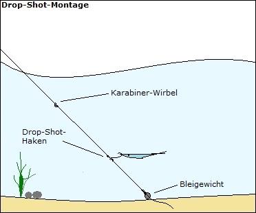Drop Shot Montage Tipps Zum Angeln Mit Einem Drop Shot Rig